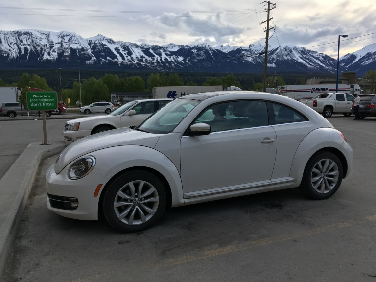Herbie not littering.jpg